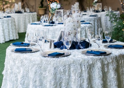 Garden Tuscana Reception Hall event in Mesa showing white and blue wedding table decor